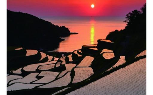 【GCFプロジェクト】浜野浦の棚田米と各種返礼品