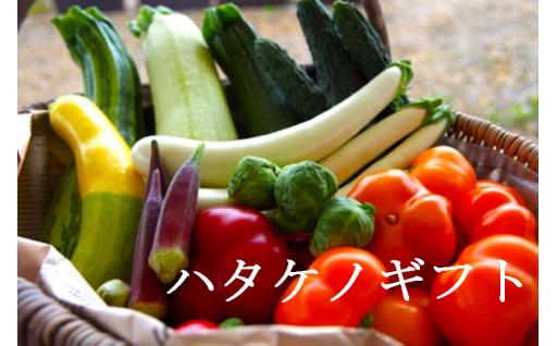 ハタケノギフト~味も見た目も美味しい野菜たち~