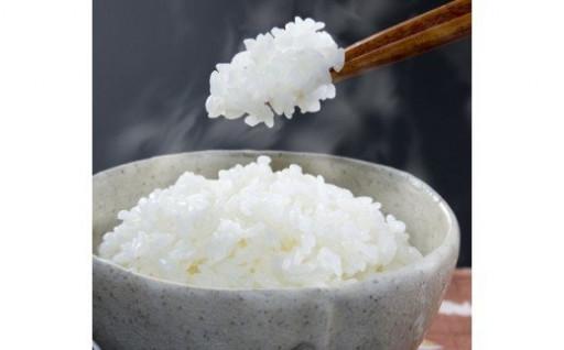 愛情込めて育てた自慢のお米【定期便が人気です!】