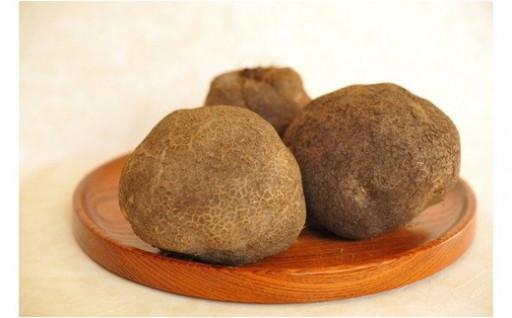 【化粧箱入り】木の山芋 2kg(4〜6玉入)