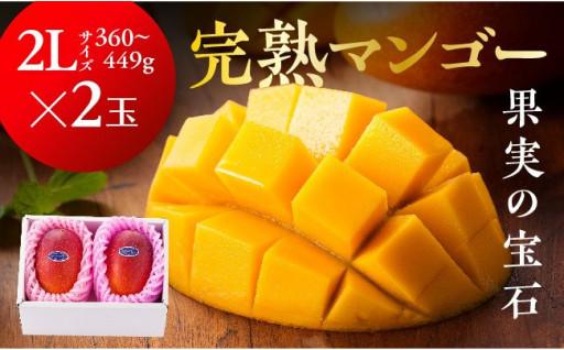 南国宮崎の温暖な気候で育った完熟マンゴー!