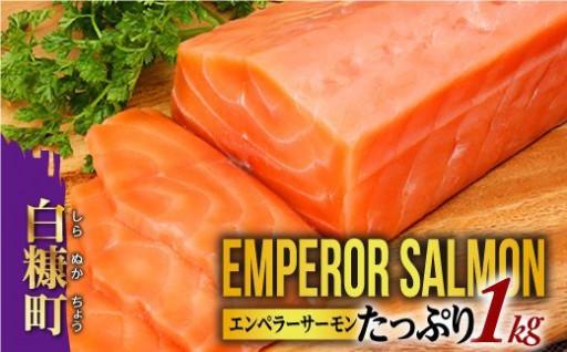 大人気!エンペラーサーモン!たっぷり1㎏!!