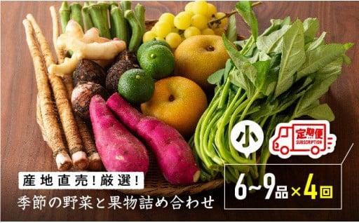 担当者が厳選した旬の野菜と果物の詰合せ!