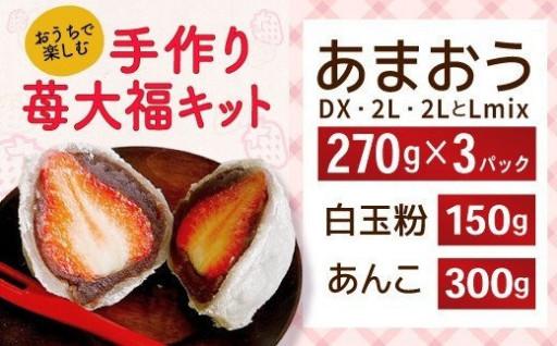 270g×3パック!あまおうの苺大福手作りキット