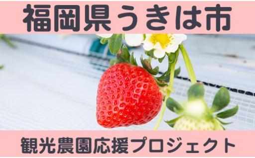 【福岡県うきは市】観光農園応援プロジェクト