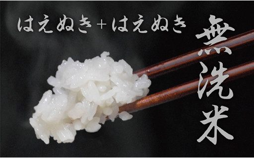 山形県朝日町産「無洗米はえぬき」10kg!