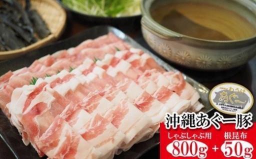 沖縄あぐー豚しゃぶしゃぶ用800g+根昆布50g