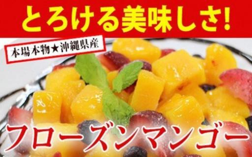 フローズンマンゴー(500g×2袋)