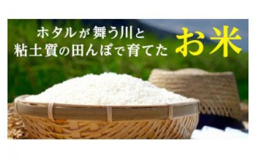 ホタルが舞う川と粘土質の田んぼで育てたお米