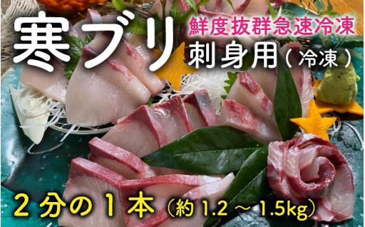 旬の寒ブリ刺身用 1.2~1.5kg