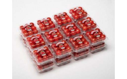 甘味のある伊豆ニューミニトマト