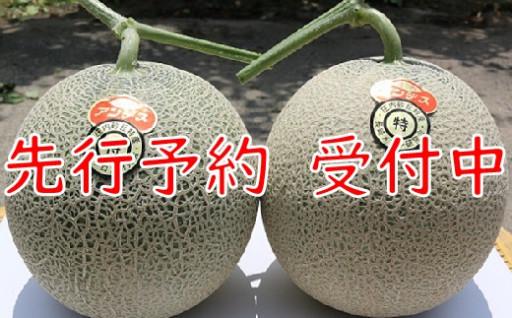 成澤さんの厳選!【2玉入】高糖度大玉メロン