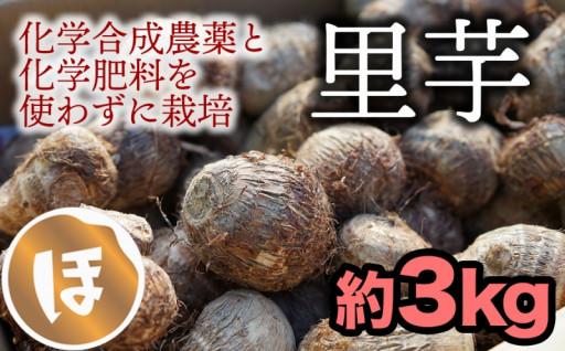 【帰化限定】化学合成農薬不使用!ねっとり系の里芋