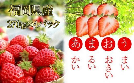 福岡ブランドいちご 朝摘みあまおう270g×4