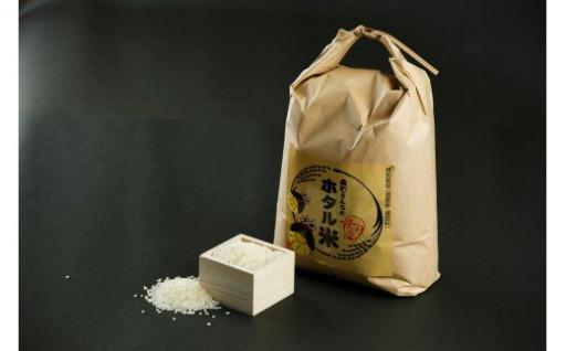永石さんちの減農薬ホタル米10kg