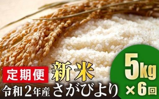 【新米!】佐賀県産さがびより 5kg×6回定期便