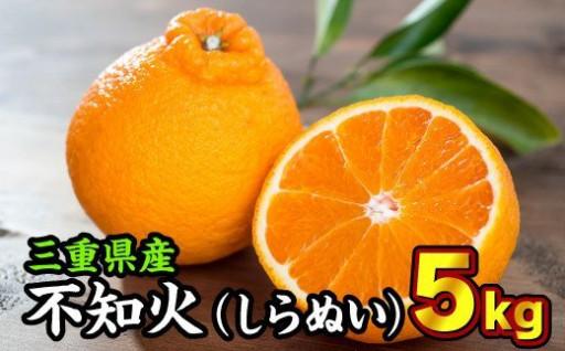 三重県産 不知火(しらぬい) 5kg