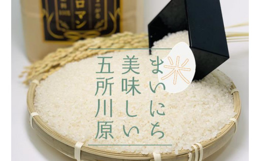 毎日の食卓に青森のお米はいかがですか?