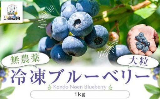 冷凍ブルーベリー1kg(500g×2パック)
