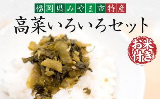 お米付き!高菜いろいろセット
