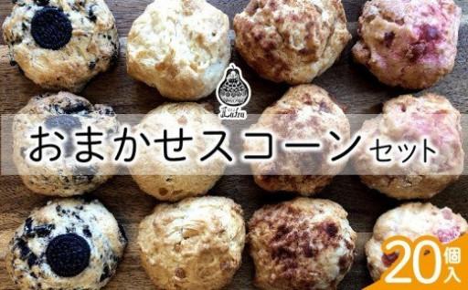 おまかせスコーンセット(20個入り)
