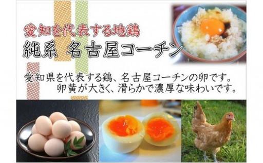 「純系 名古屋コーチンの卵」(30個)