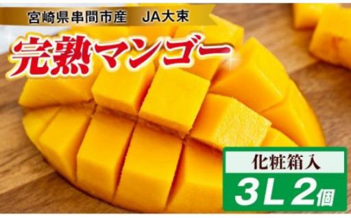 宮崎県串間市産 完熟マンゴー(3L×2個)