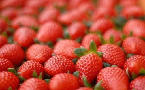 ★数量限定★ のらくら農園の新鮮いちご♡