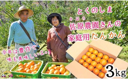 【家庭用】徳之島たんかん3kg(寄附額5千円)