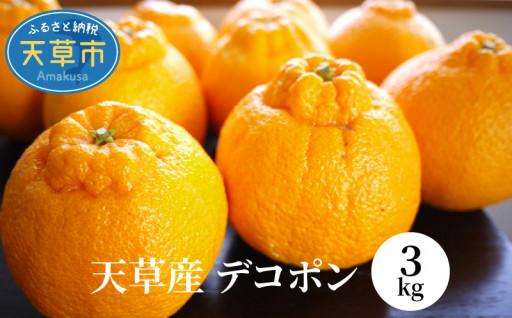 柑橘の王様【デコポン】旬の季節です!