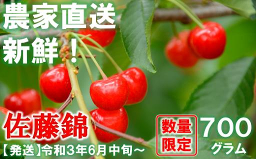 大人気!山形県産の佐藤錦🍒約700g