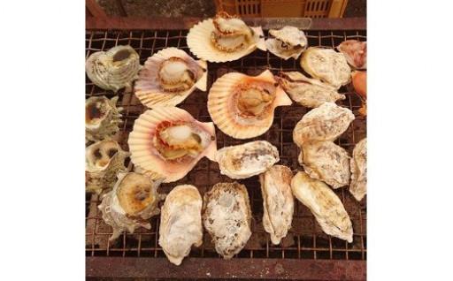 殻付きマガキ 約1kg ひおうぎ貝 10枚