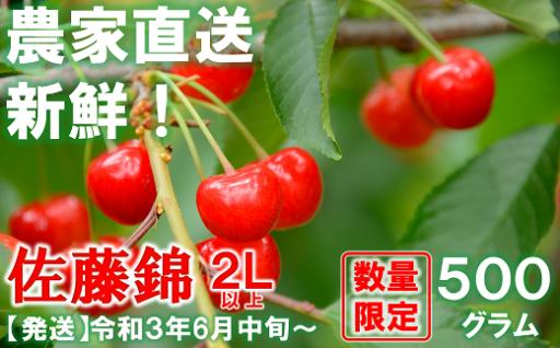 大人気!山形県産の佐藤錦🍒2L以上約500g