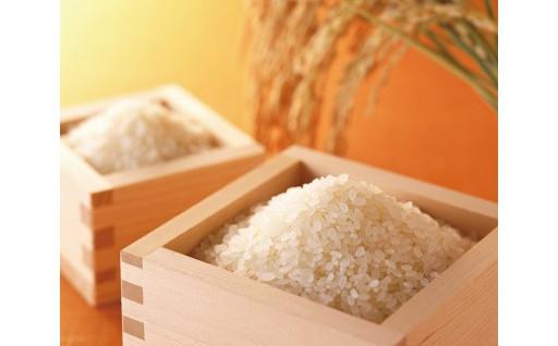安心安全おいしいが3か月間!特別栽培米コシヒカリ