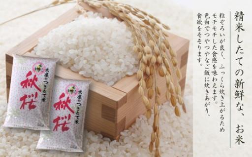 \美味しいエコ栽培米🍚とぎ汁もエコ活用しよう/