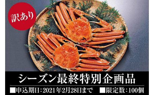【シーズン最終】冬の味覚! 松葉ガニ<訳あり>!