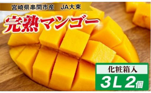 宮崎県串間市産完熟マンゴー(3L×2個)化粧箱入