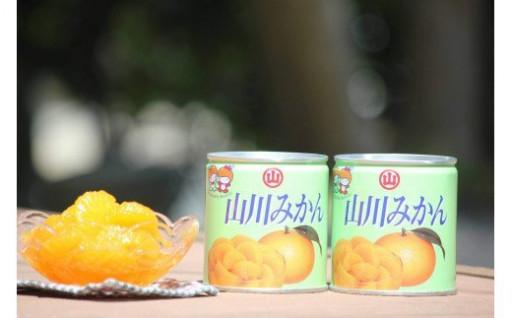 保存食にも最適! 山川みかん 缶詰24缶セット