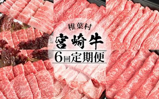 【定期便 6回】合計3.25キロ 宮崎牛づくし