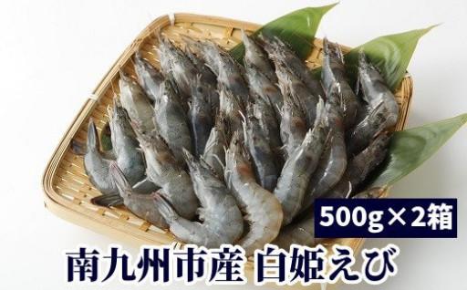 南九州市産バナメイエビ「白姫えび」セット