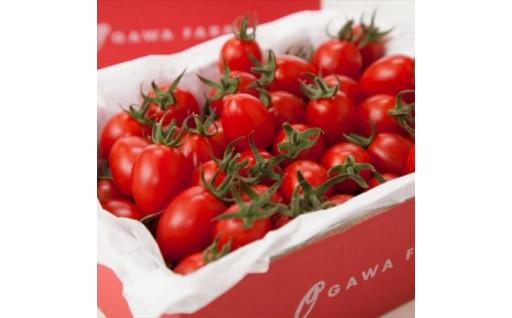 ★期限延長★行き場を失った完熟トマト増量中!