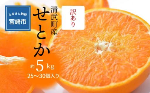せとかみかん 清武町産「せとか」訳あり(5kg)
