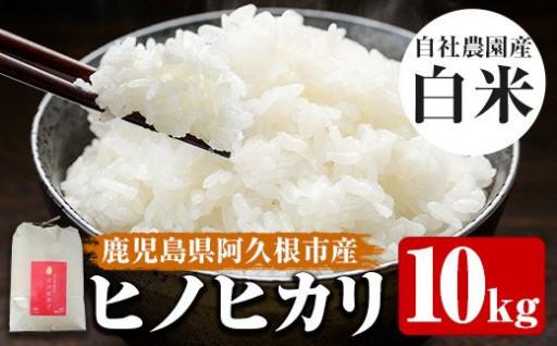 鹿児島県産自社農園産のお米!ヒノヒカリ10kg!