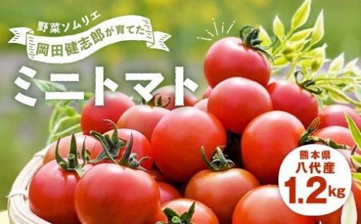 美味しいトマトを厳選してお届けいたします。