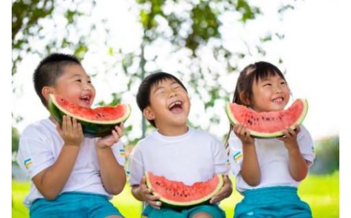 夏のすいかはやっぱり本場の『尾花沢すいか』!