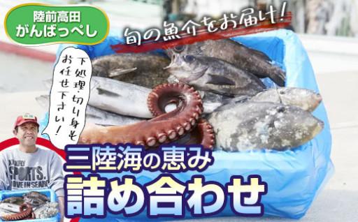 【特選】三陸海の恵み詰め合わせ【下処理可】