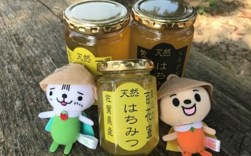 本日は『みつばち🐝』の日!甘~い蜂蜜をどうぞ!