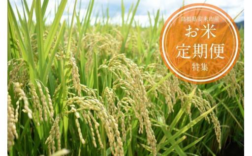 新生活にぴったり!お米の定期便(毎月・隔月)