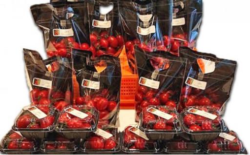 肉厚で旨みのミニトマトとシシリアンルージュ詰合せ
