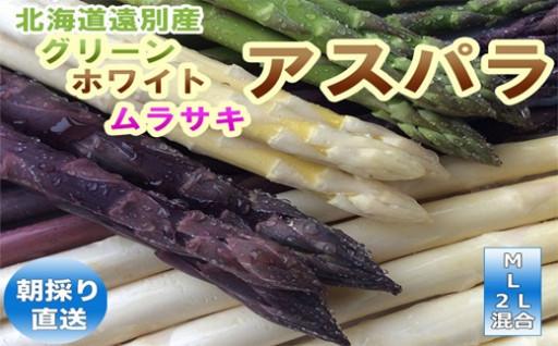 【数量限定】食べ比べ!アスパラ!